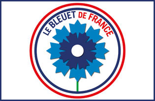 Commémoration - Campagne nationale d'appel au don du Bleuet de France du 4 au 13 novembre 2019
