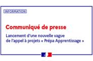 """Lancement d'une nouvelle vague de l'appel à projets """"Prépa Apprentissage"""""""